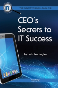 CEO Secrets front cvr web